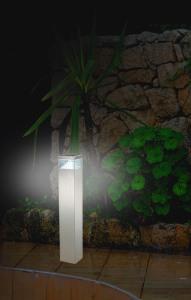 Borne LED inox extérieur